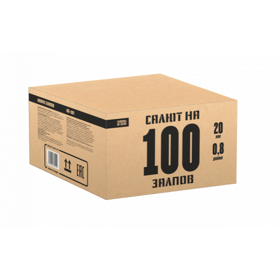 МБ-1001 100